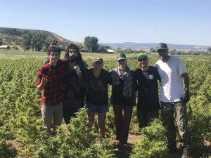 Hemp farmers group photo