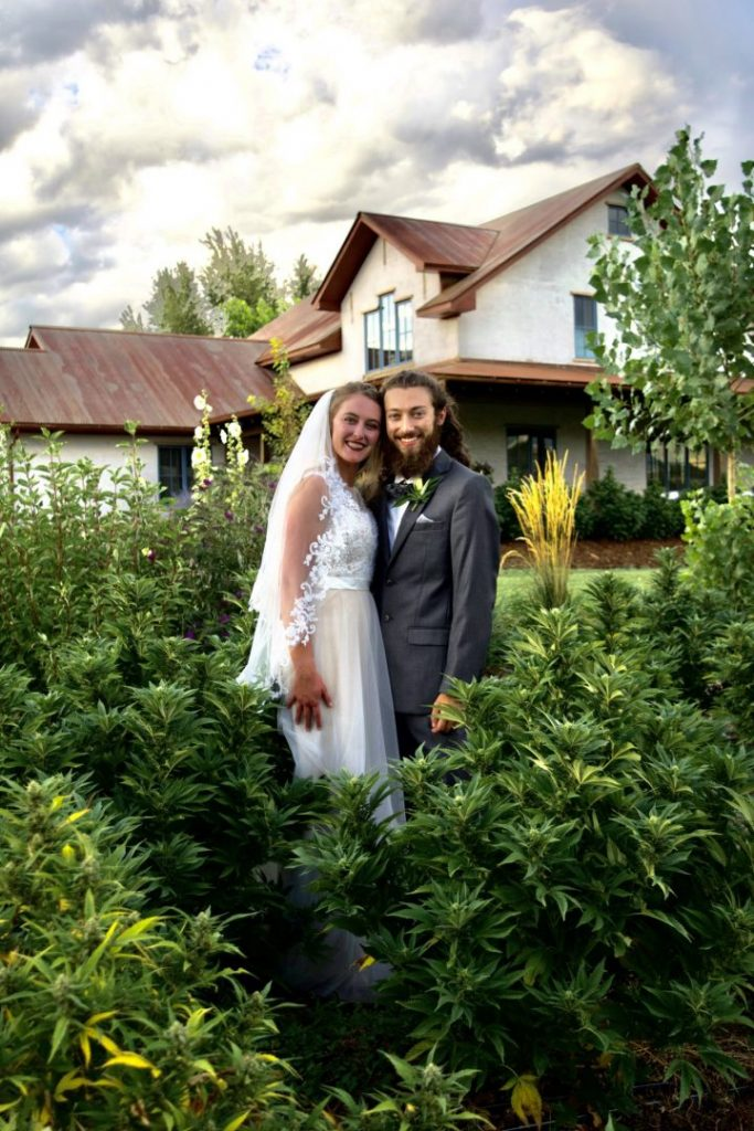 Wedding couple standing amongst dark green hemp plants with house in background