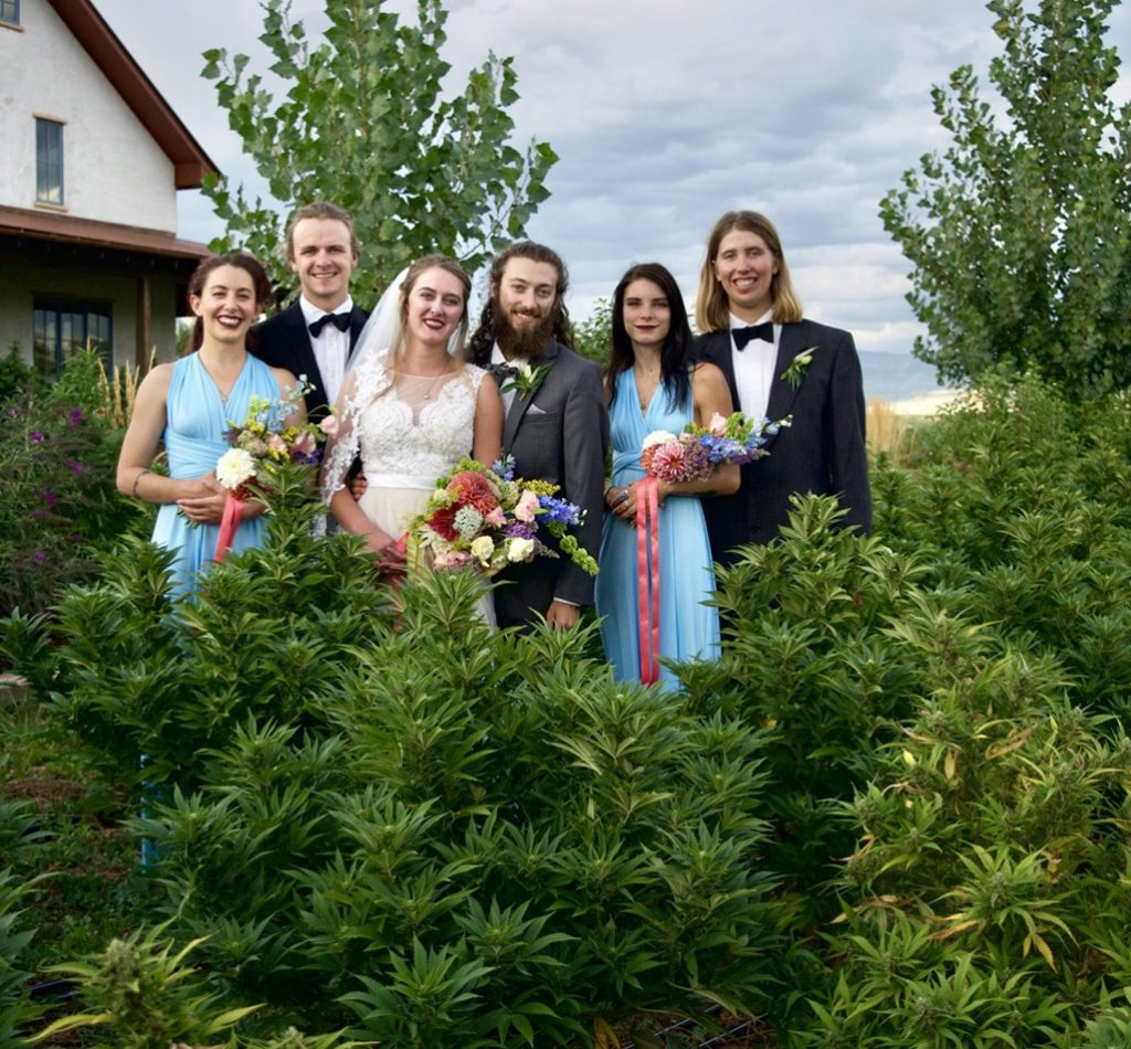group wedding photo in a hemp field