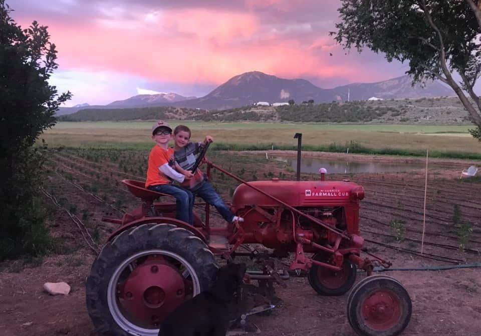 Kids on a red tractor at an organic hemp farm.